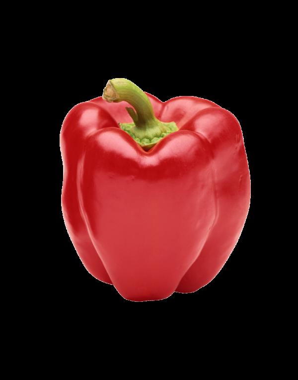 Capsicum - Red