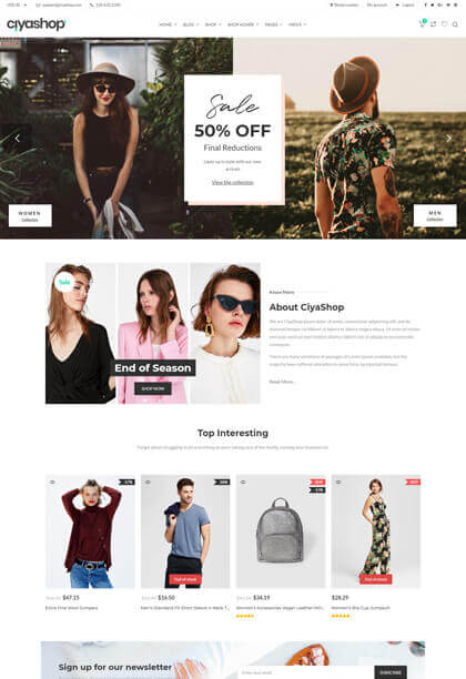 Classic responsive ecommerce wordpress theme
