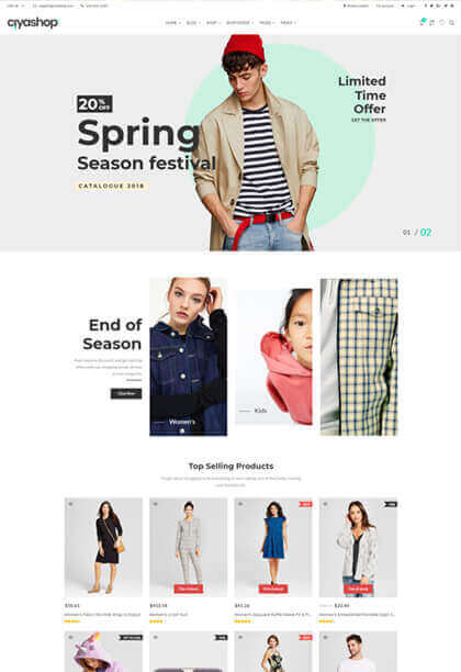 Default responsive ecommerce wordpress theme