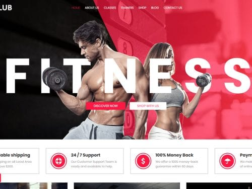 Why you should buy a Ciyashop WordPress themes for Fitness and Gym?